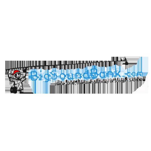 BigSoundBank
